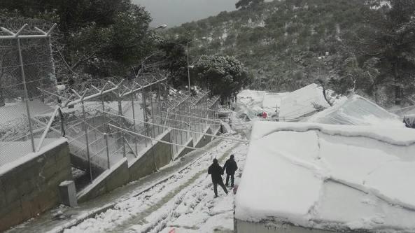 logo refugiados frontera nevada