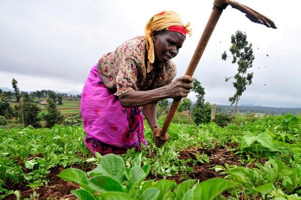 logo africa emakumea atxurrean kenya