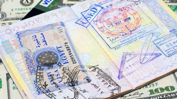 logo icono pasaportes 1