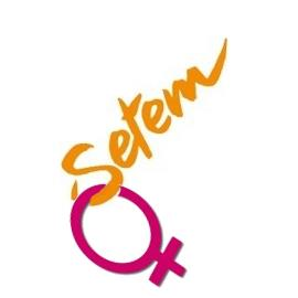 logo setem logo feminista